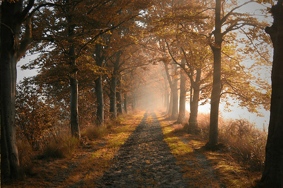 思わず息をのむほどの美麗さ、世界中で撮られた夕焼けや朝焼けの写真30枚2